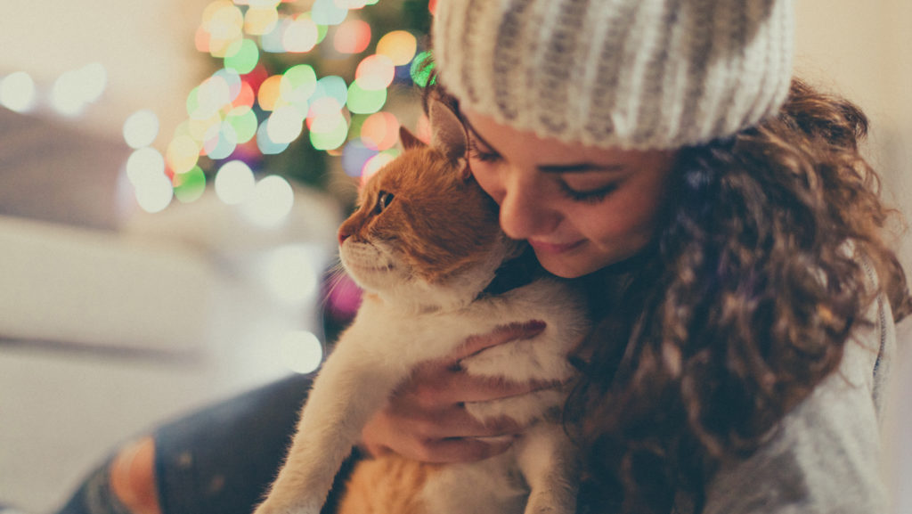 Holiday Pet Safety Guide